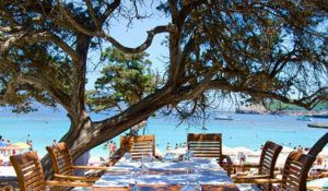 Cala Bassa Beachclub hoofd